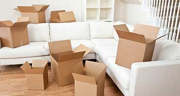 Furniture Remolist